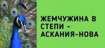 Жемчужина в степи - Аскания-Нова