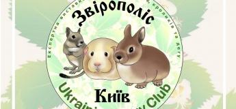 Зверополис 2 - экспертная выставка морских свинок, кроликов, дегу и крыс