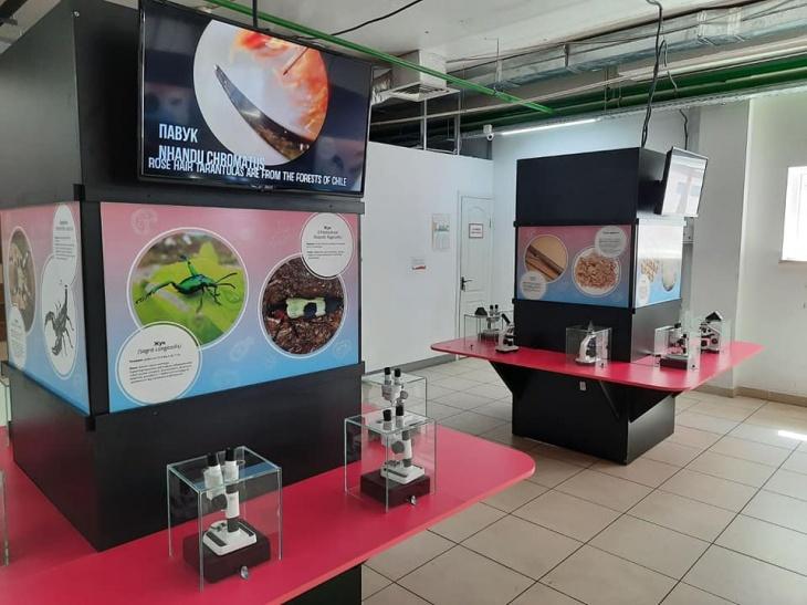 """Найбільша в Україні виставка живих мікроорганізмів """"Життя під мікроскопом"""""""