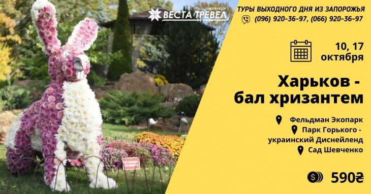 Харьков - бал хризантем!