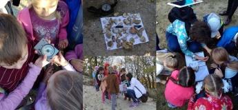 Геологічні таємниці міста Лева для дітей