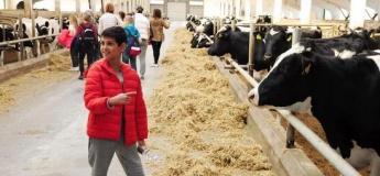 Экскурсия на молочную ферму