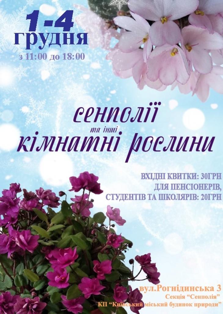 Выставка фиалок и других комнатных растений