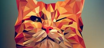 Створимо креативні арт-принти у графічному редакторі Adobe Illustrator