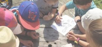 Літній табір Erfolg