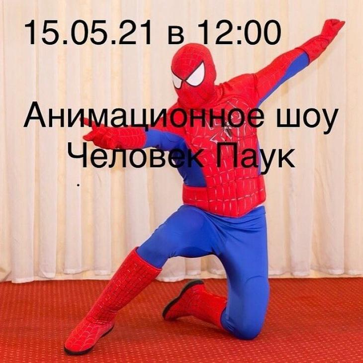 Анимационное шоу «Человек Паук»