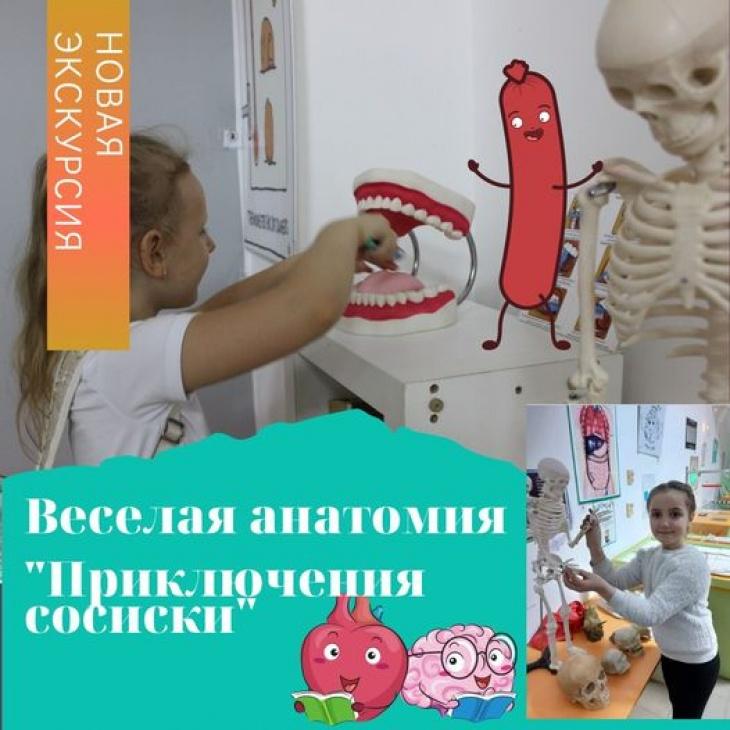 """Веселая анатомия """"Приключения сосиски"""""""