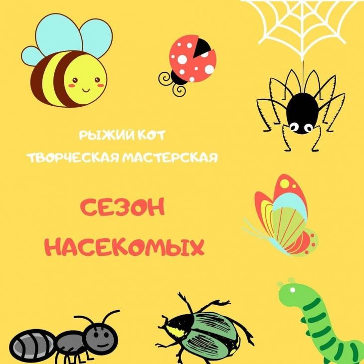 """Сезон насекомых в ДЦ """"Теремок"""""""