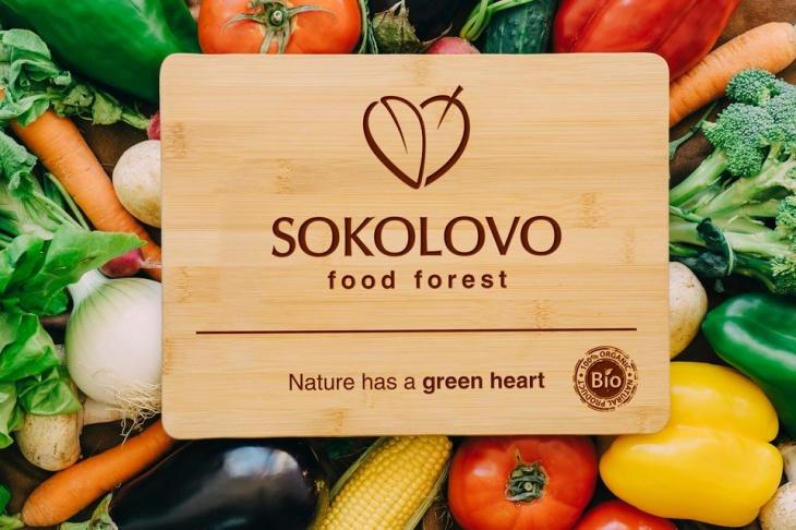 День открытых дверей на органической ферме Соколово Фуд Форест