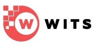 Онлайн IT-школа WITS: профессиональная подготовка Junior программистов и дизайнеров