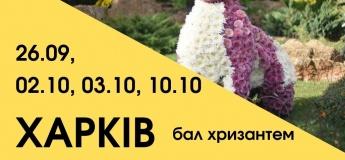Харьков - украинский Диснейленд и бал хризантем