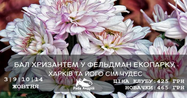 Бал хризантем у Фельдман екопарку, Харків та його сім чудес