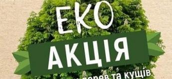 Эко-акция по высадке деревьев и кустов