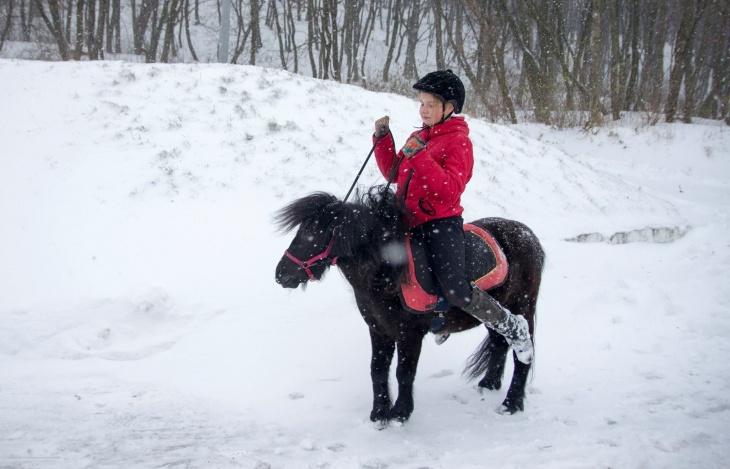 Зимове катання на поні