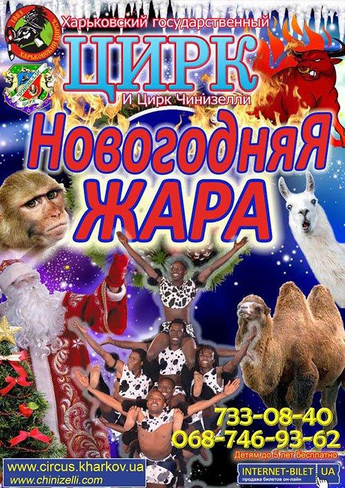 Цирковая программа «Новогодняя жара»