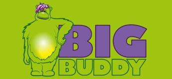 """Детская игровая площадка """"Big Buddy"""""""