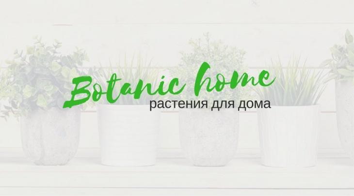 Botanic home