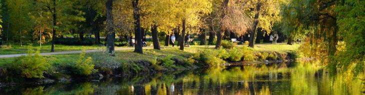Центральний парк Дубовий Гай