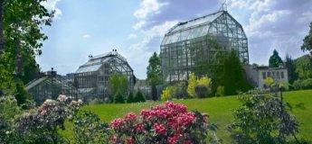Ботанічний сад ЛНУ ім.І.Франка