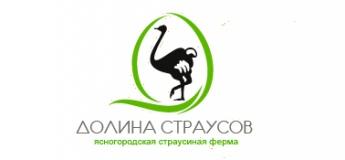 """""""Долина страусов"""" страусинная ферма"""