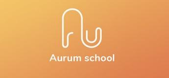 Приватна школа Aurum School