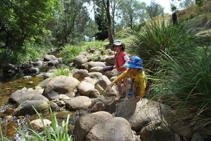 Nature Appreciation Walk at Bukit Timah Nature Reserve