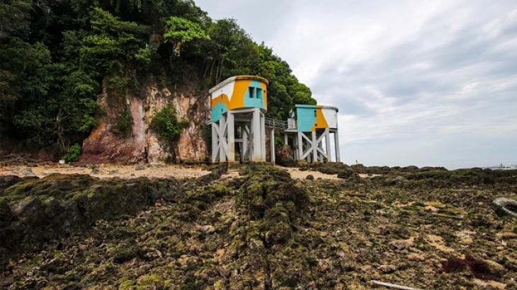 Siloso Headland Intertidal Programme