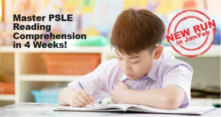 4-Week PSLE Chinese Comprehension Intensive Programme