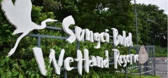 Paint Along Session at Sungei Buloh Wetland Reserve