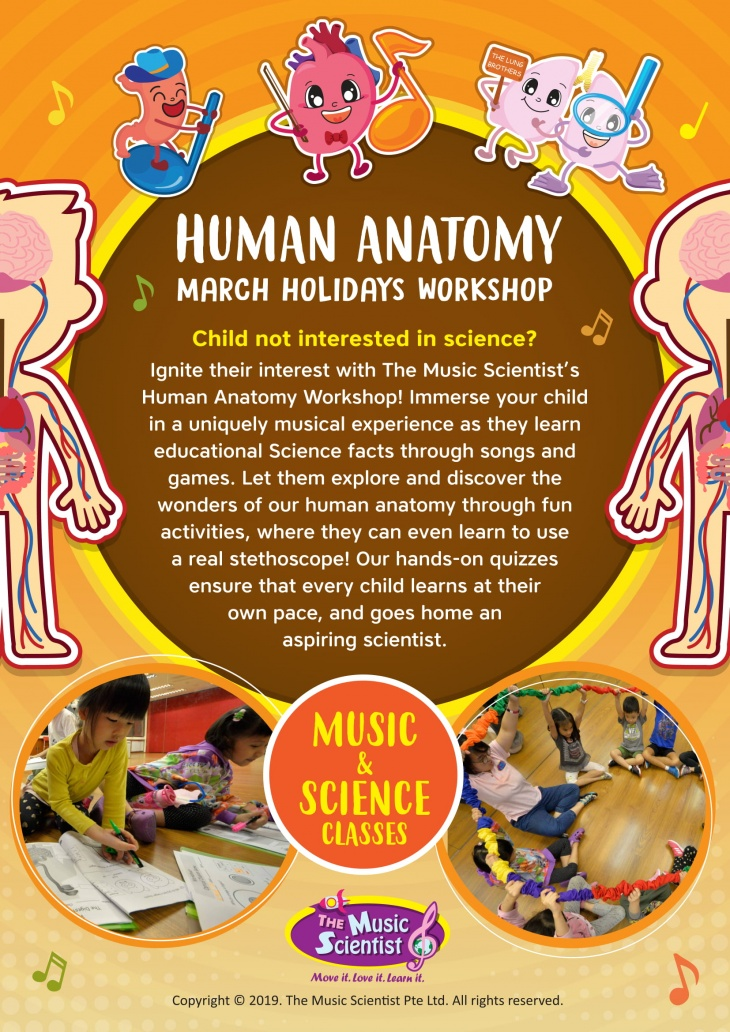 3-day Human Anatomy March Holiday Workshop for children aged 5-7 years old @ The Music Scientist Pte Ltd