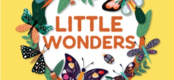 Little Wonders at Northpoint City