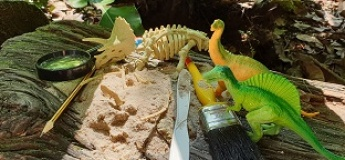 Let's Learn About Plants: The Land Before Time (A Hands-on Workshop)