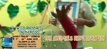 Wild Animals in the Zoo!