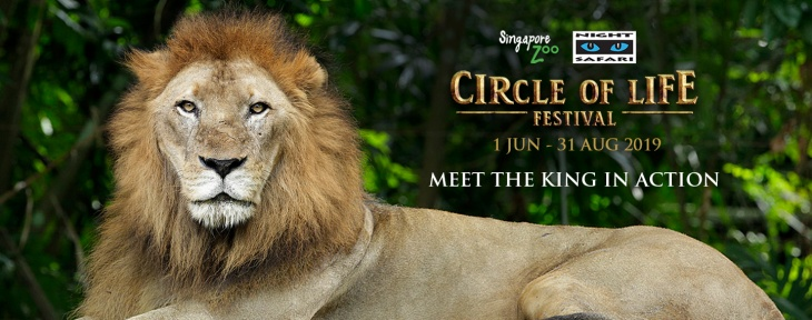 Circle of Life Festival