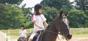 June Holidays Horse Riding Workshop Level 1