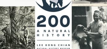 200: A Natural History