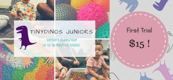 TinyDinos Juniors for 2 to 3yo