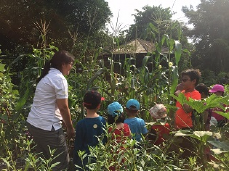 Farm with Us: Plant A Seed