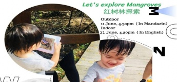 Indoor: Let's Explore Mangroves - Weekly Learn with Play at Home