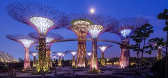 Exclusive Promo Code - Gardens by the Bay and OCBC Skyway