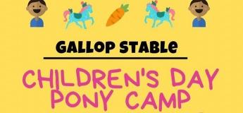 Children's Day Pony Camp