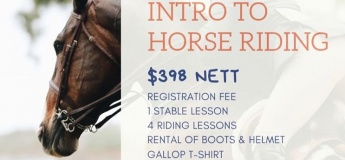 5 Weeks Intro To Horse Riding