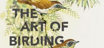 Bird watching in the Garden (A Guided Tour)