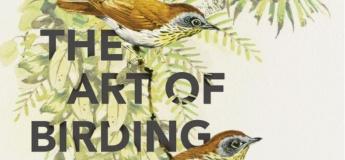 Bird Craft Workshop