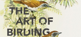 Art of Birding Exhibition (A Guided Tour)
