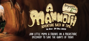 A Mammoth Adventure Back In Time