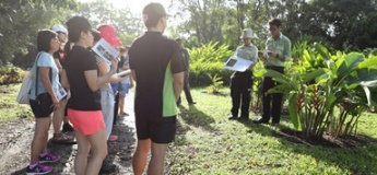 Plant Guided Walk at Jurong Lake Gardens