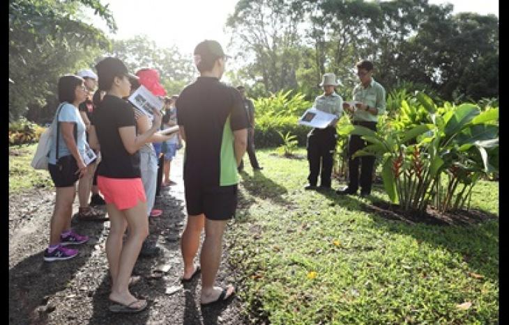 Plant Guided Walk at Jurong Lake Gardens