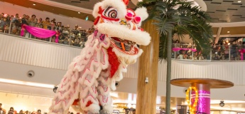 Lion Dance Performances @ Multiple Properties
