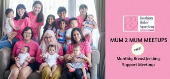 BMSG 31 Jan 2019 Mum2Mum Meetup